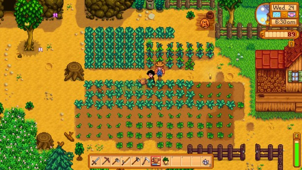 Stardew Valley screenshot showing my very first farm