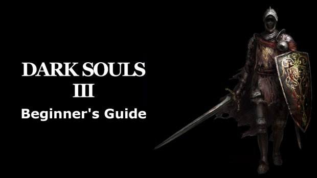 Dark Souls  Knight Build Beginner