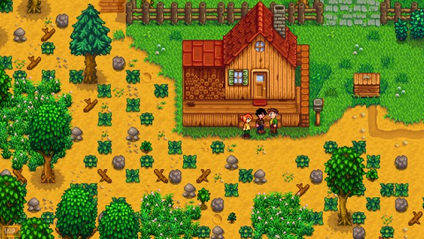 Stardew Valley's initial farm is a bit of a mess