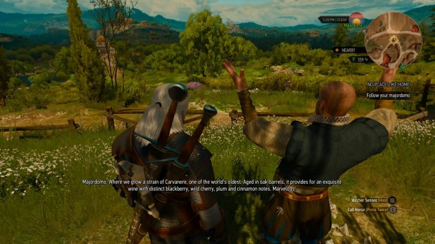 The Witcher 3: Blood and Wine features an upgradeable vineyard