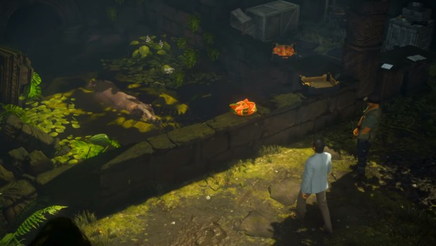 Hitman 2 screenshot of a hippo from the Colombia level
