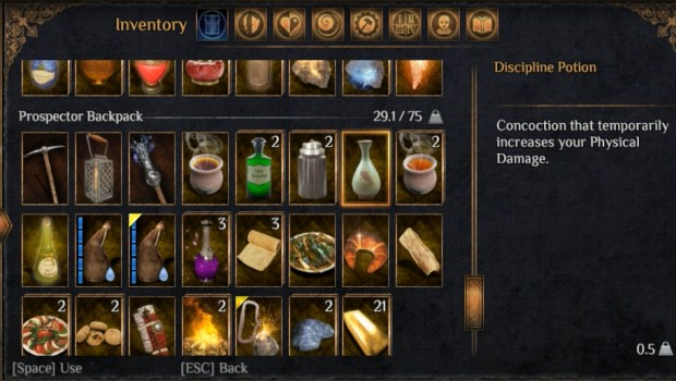 Outward screenshot of potions in the inventory system